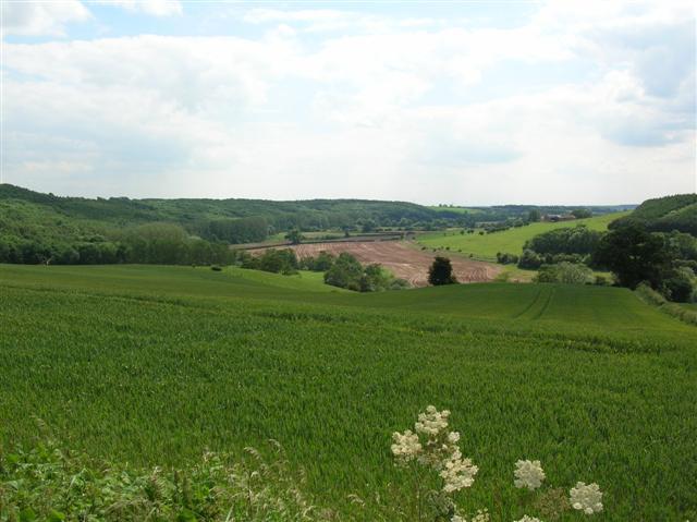 Kirkham Valley