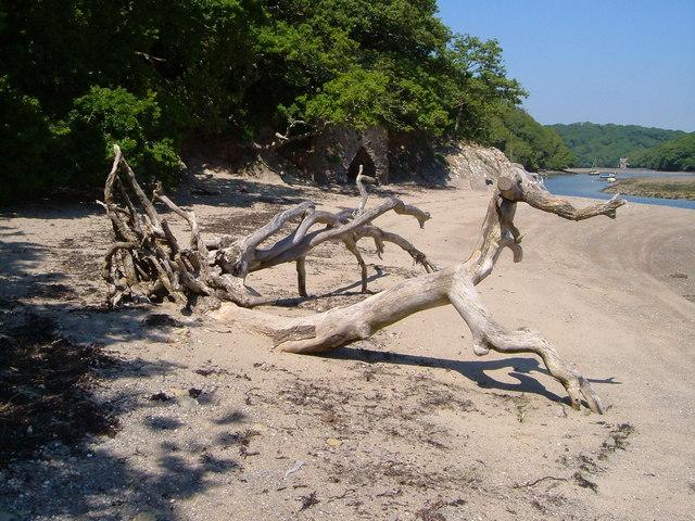 Dead tree and lime kiln, Erme estuary