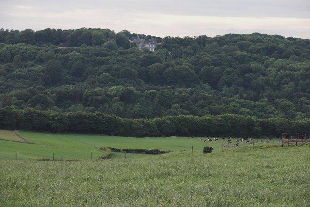 Fields between West Skelder Farm and Rock Head Farm