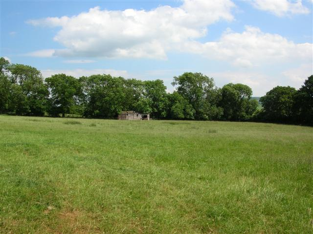 Field near Westow