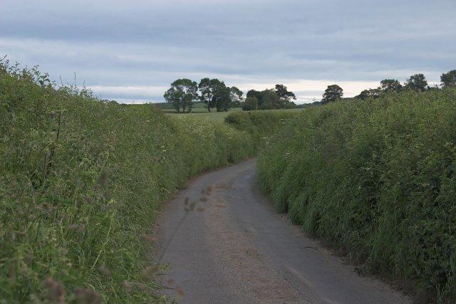 Dunsley Lane