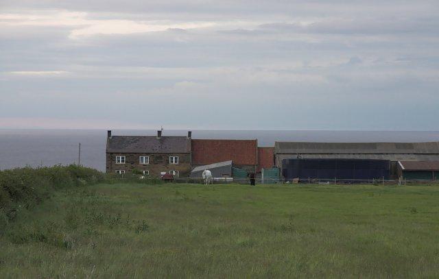 Raven Hill Farm
