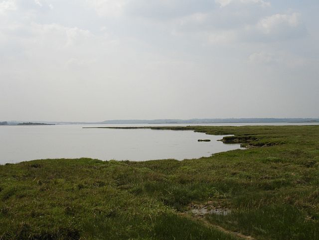 Saltmarsh, Rainham Creek
