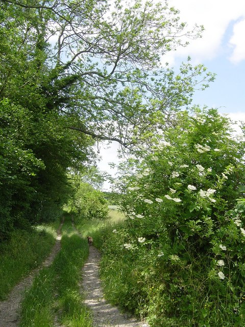 Howard's Lane, Holybourne