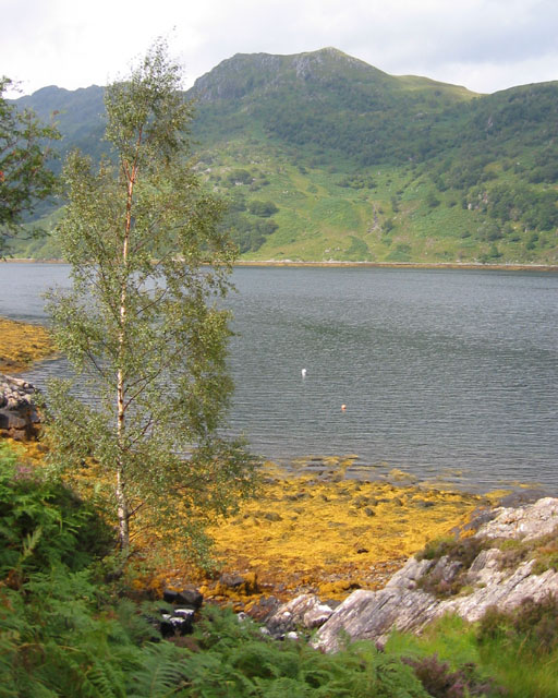 Low tide at Loch Hourn