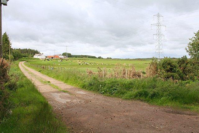 Redbog Farm nestled in the trees of Teindland Wood.