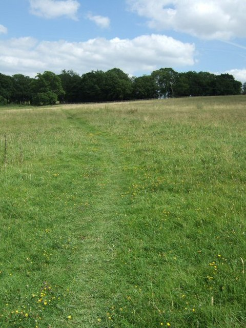 Footpath Leading to Hoopers Copse