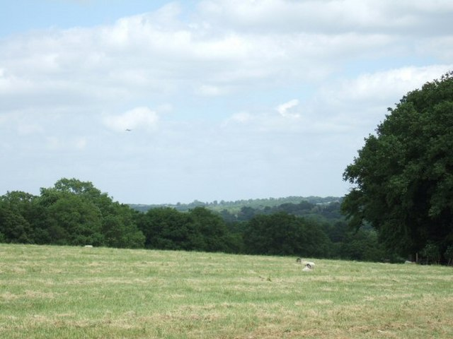 Field and Wood Close to Durfold
