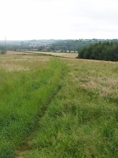 Path through grass, Chesham Bois