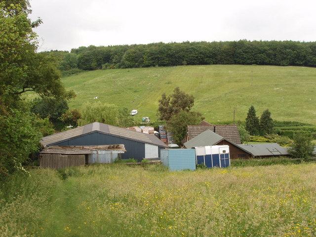 Nut Hazel Cross Farm, Chesham Vale