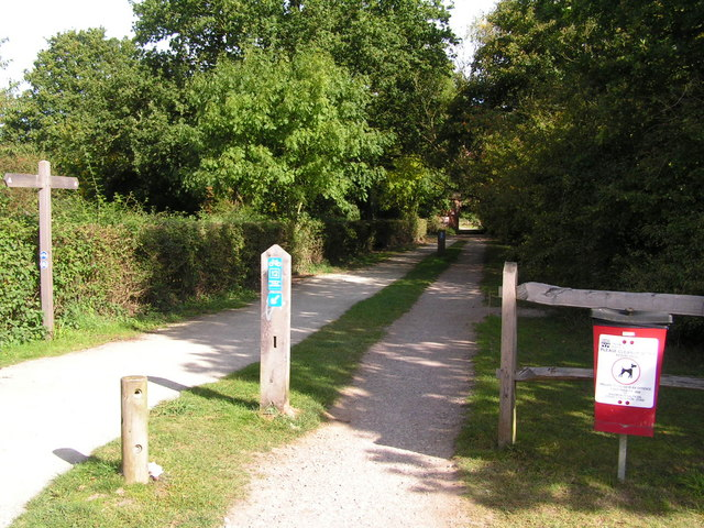 Cycle track through Haysden Country Park.