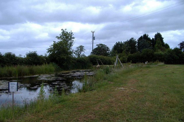 Pond restored as a nature reserve