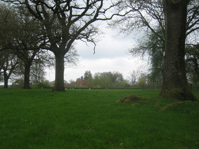 Rural scene near Steventon
