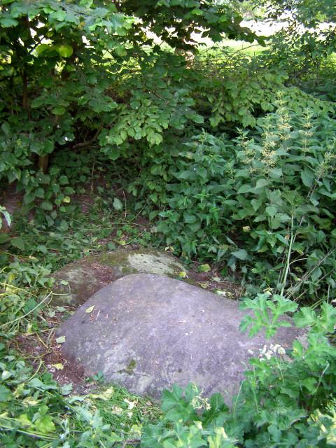 Pair of sarsen stones near Berry Bridge, Twyford