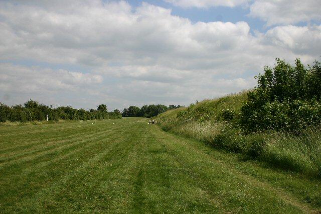 Training gallops at Newmarket