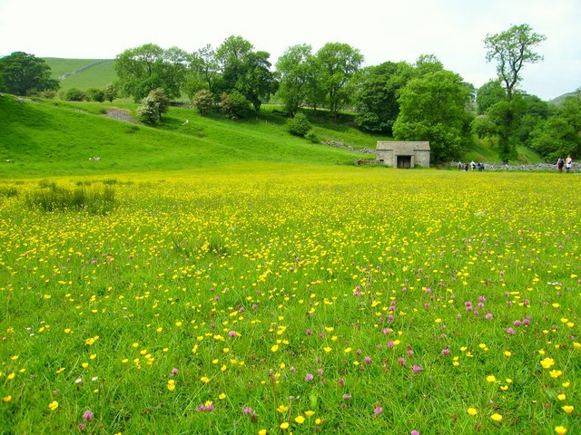 Mantley Field Laithe and hay meadow.