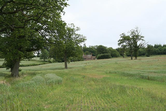 Huntsham: towards Venlake's Farm