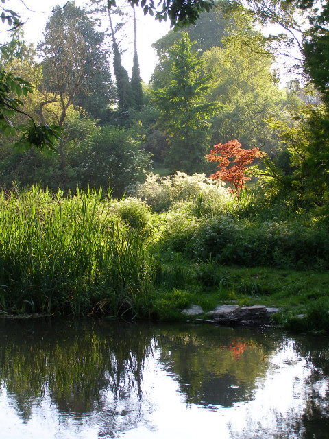 Colourful garden by the Itchen Navigation, Shawford