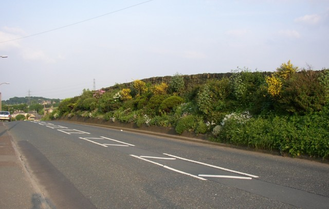 Roadside garden, Dewsbury Road, Rastrick