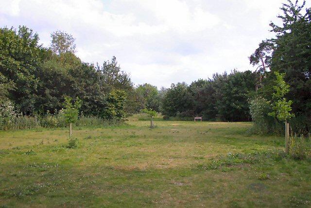 Picnic site at Barham