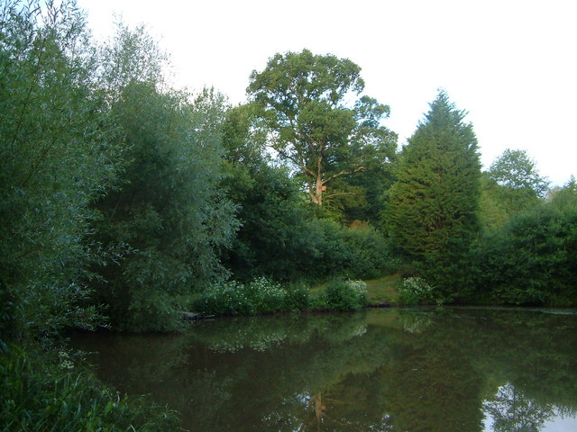 Star Barton Ponds