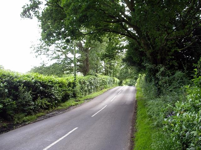 Ryedown Lane