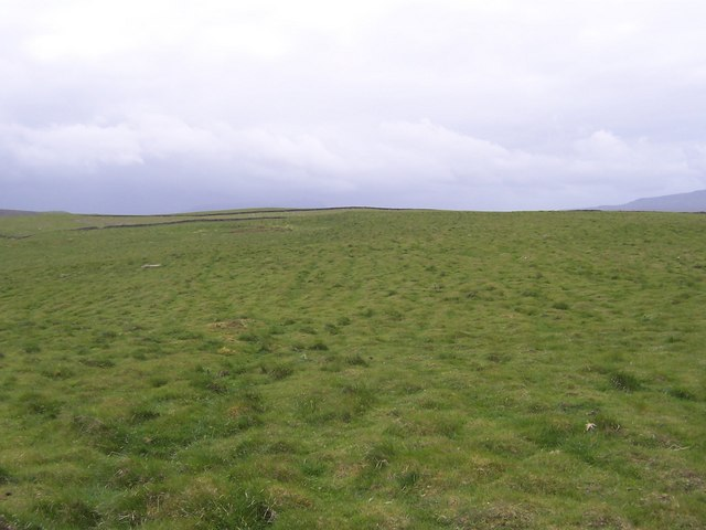 Snaizeholme Fell