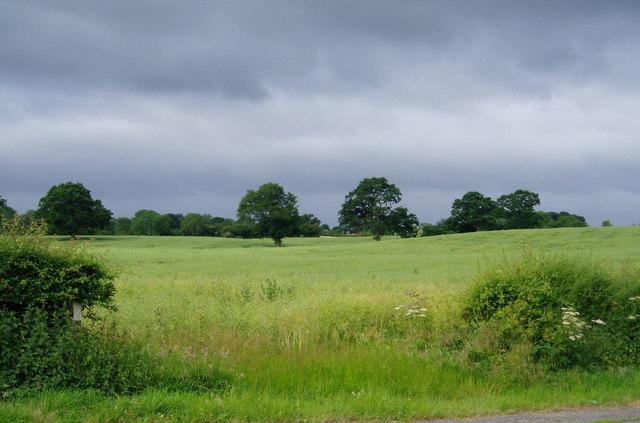 Farmland near Little Green