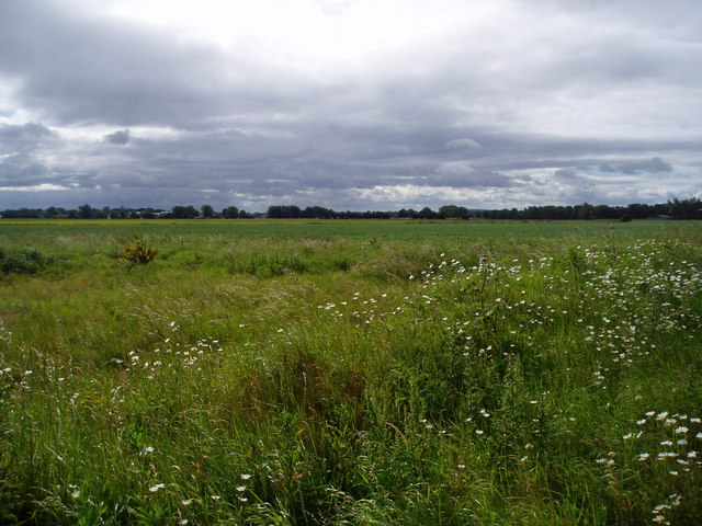 Countryside south of Prees Heath