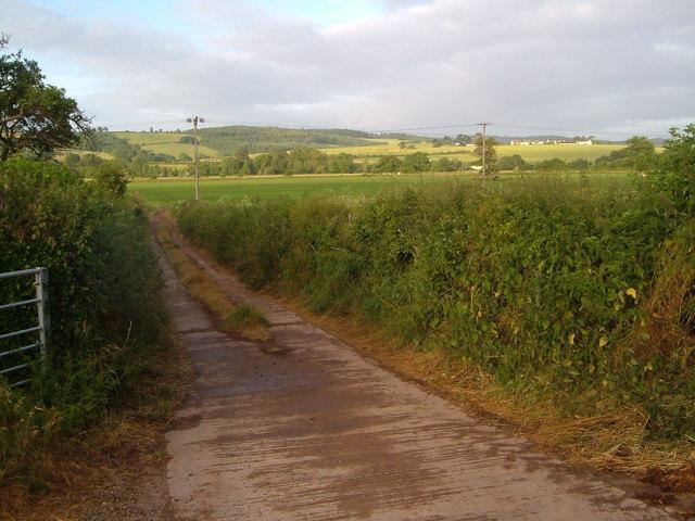 Creedy valley from Winscott Barton