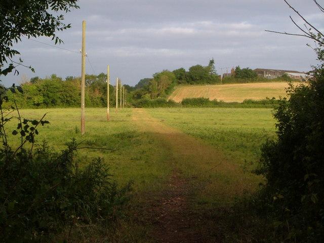 Track to Creedy Barton