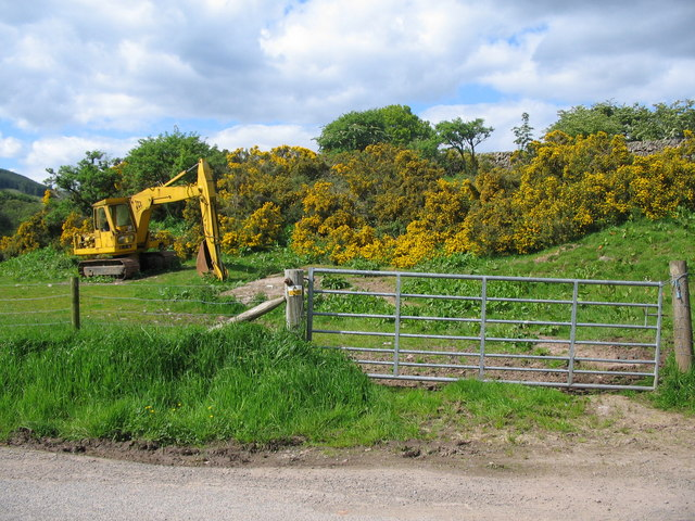 Digger and gorse
