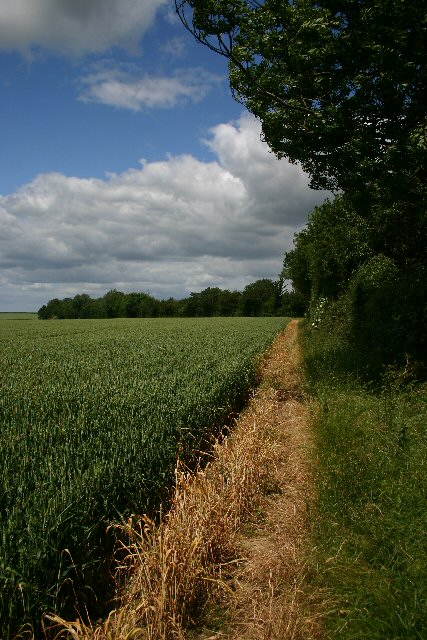 Footpath to Badmondisfield Hall
