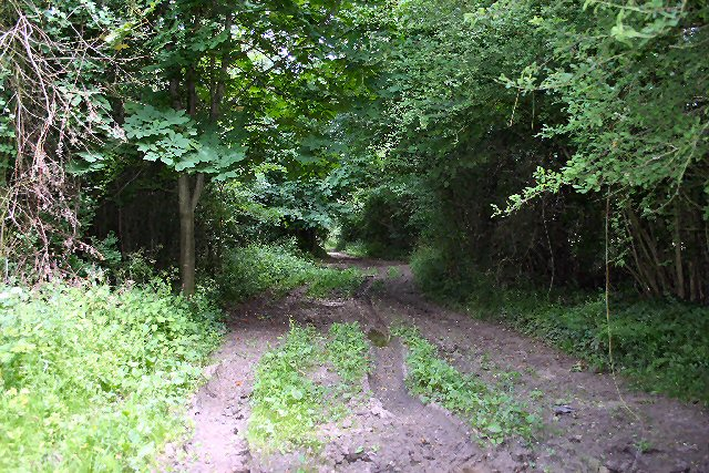 Muddy byway, or 'green lane'.