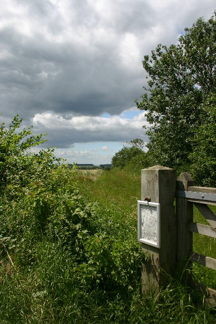 Conservation walk near Wickhambrook
