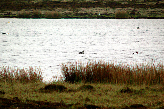 Mill Loch, Eday