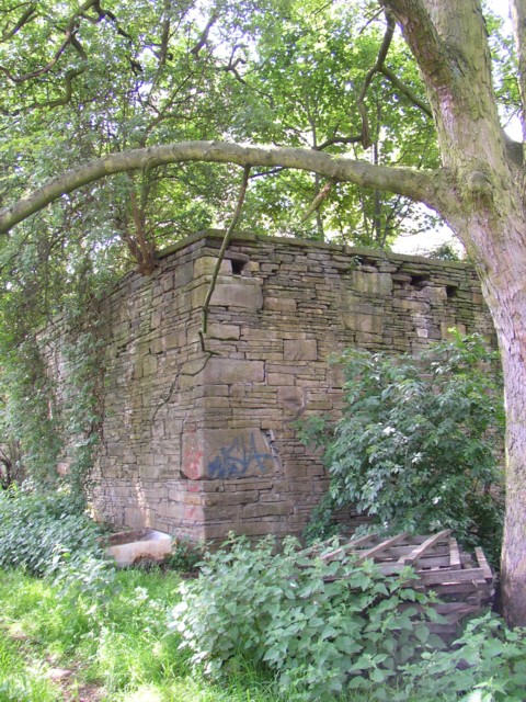 Corner of wall to former mill reservoir off Spout Hill, Rastrick