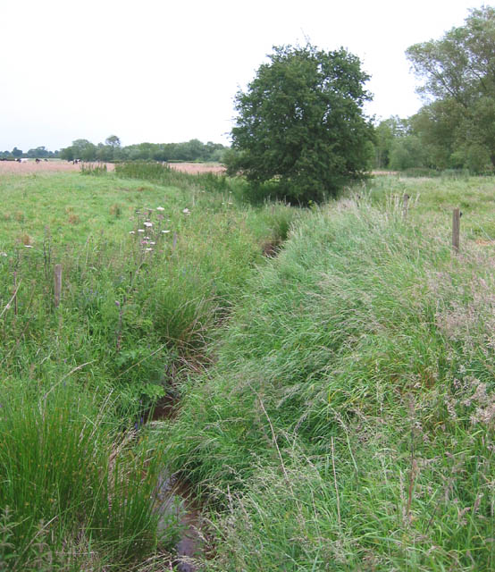 Drainage ditch, Norbury meres