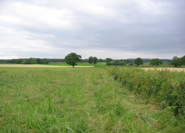 Farmland at Holtridge