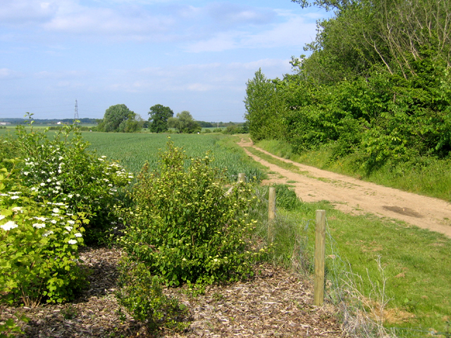 Footpath east of Biggleswade, Beds