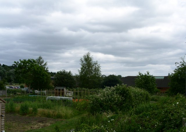 Allotments on the Timberdine site