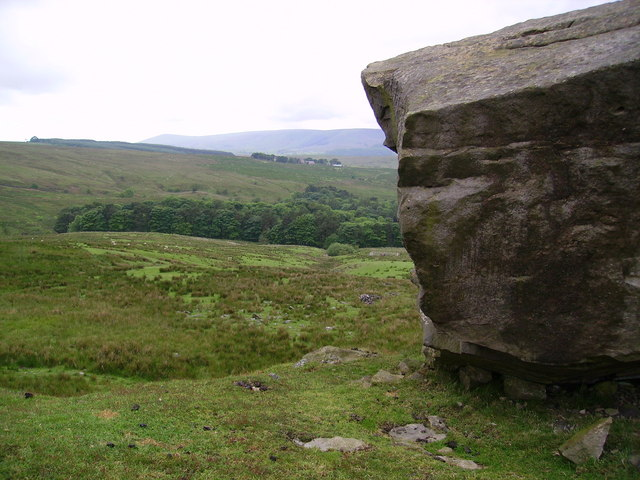 Crag Wood from Crag Stones