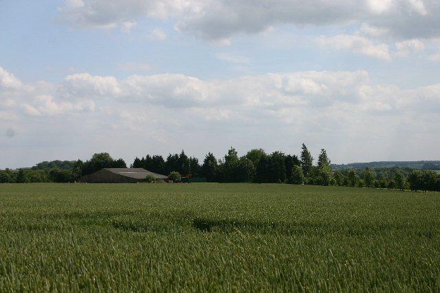 Coblands Farm, near Depden