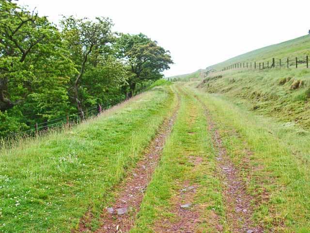 The track to Twyn Dylluan-ddu