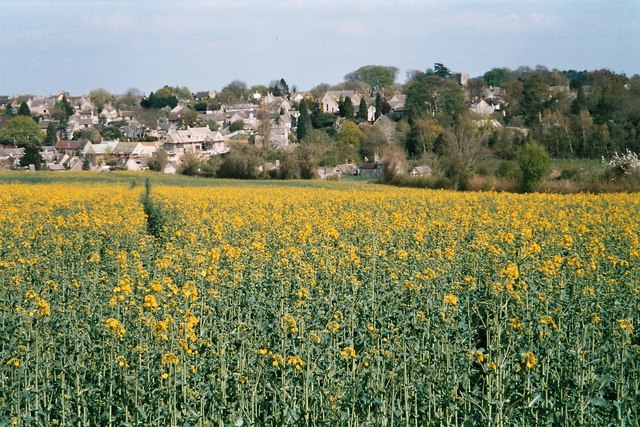 Field near Stonesfield