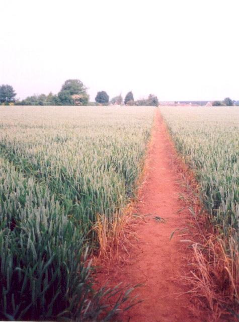 Footpath, Drayton