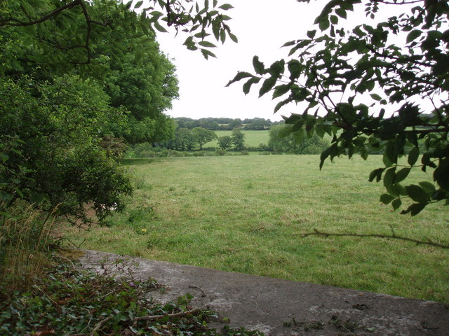 Looking towards Clowance woods