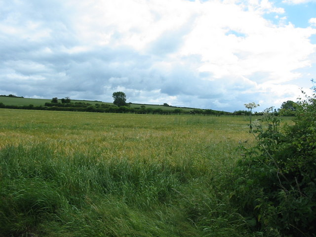 Arable land looking towards Wilton Heights