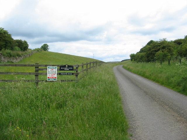 Lane to Malton Cote Farm, 2 Km north of Ebberston