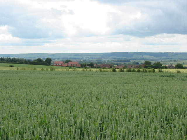 View across outskirts of East Ayton village to Staxton Wold